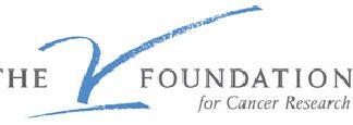 the_v_foundation.jpg