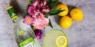 Seagram's Apple Lemon Drop Cocktail Recipe