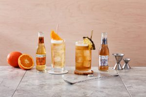 Fever-Tree Mixers Ginger Expressions