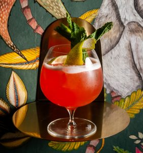 Ron Barceló A Jungle Full of Birds cocktail recipe