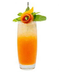 Monin clean label Orange Spritz Syrup