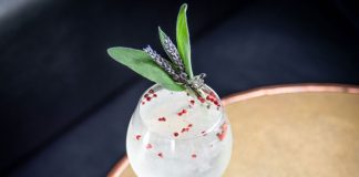 Monkey 47 Gin Summer Gintonica cocktail recipe