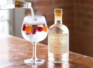 gin and tonic cocktail recipe world gin day