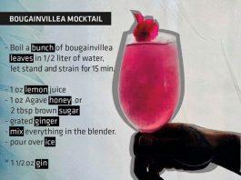 bougainvillea mocktail recipe The Cape