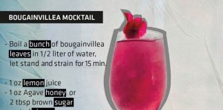 bougainvillea mocktail recipe The Cape