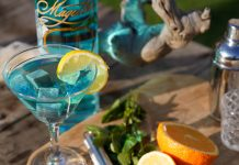 magellan gimlet gin recipes