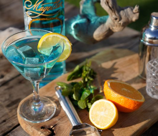 magellan gimlet gin recipes