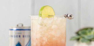 regatta craft mixers cocktail recipe