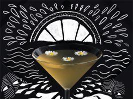 bols genever cocktail contest