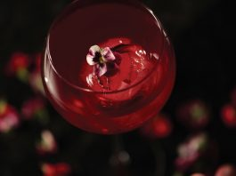 brockmans spring cocktail recipes