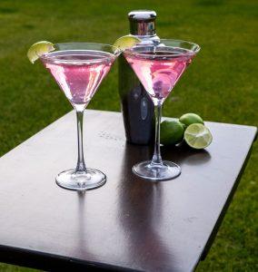 hard seltzer cocktail book