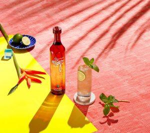 tequila mule recipe